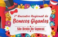 Diretoria de Cultura e Eventos promove 1º Encontro Regional de Bonecos Gigantes