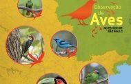 São Bento do Sapucaí é um dos destaques na Observação de Pássaros.